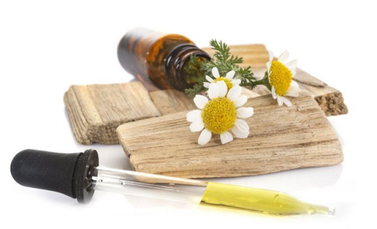 Mieux gérer ses émotions avec les plantes médicinales (3ème trimestre)