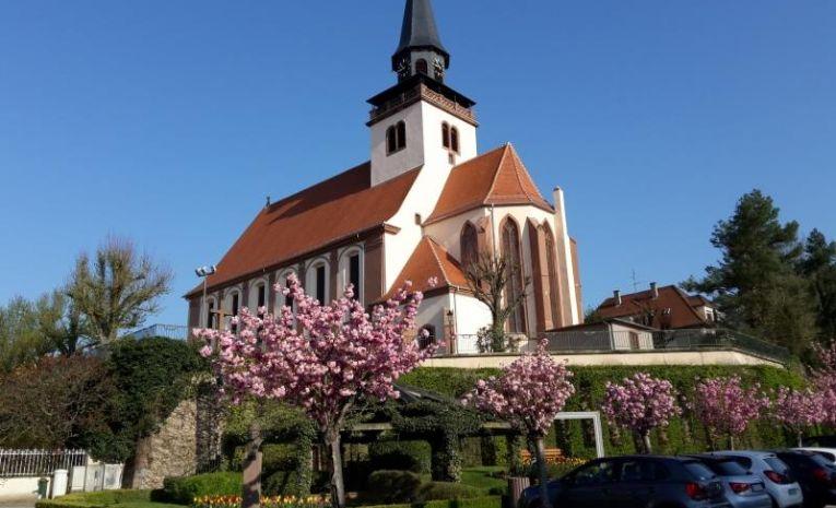 Randonnées : De Wissembourg à Lauterbourg, le long de la Lauter (67)